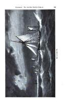 Seite 769