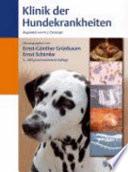 Klinik der Hundekrankheiten