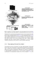 Seite 10