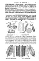 Seite 493