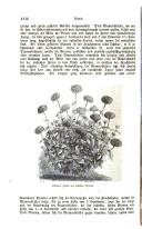 Seite 1316