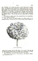 Seite 1317