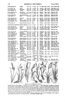 Seite 778