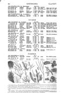 Seite 940