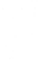 Seite 386